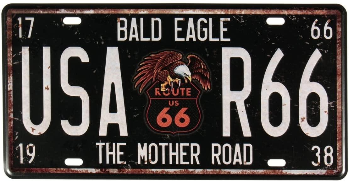 targa-auto-bald-eagle